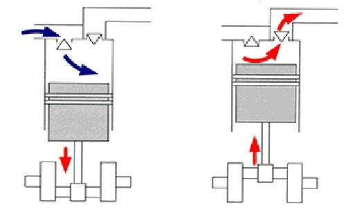 поршня, рабочего цилиндра, всасывающего клапана, нагнетательного клапана, к